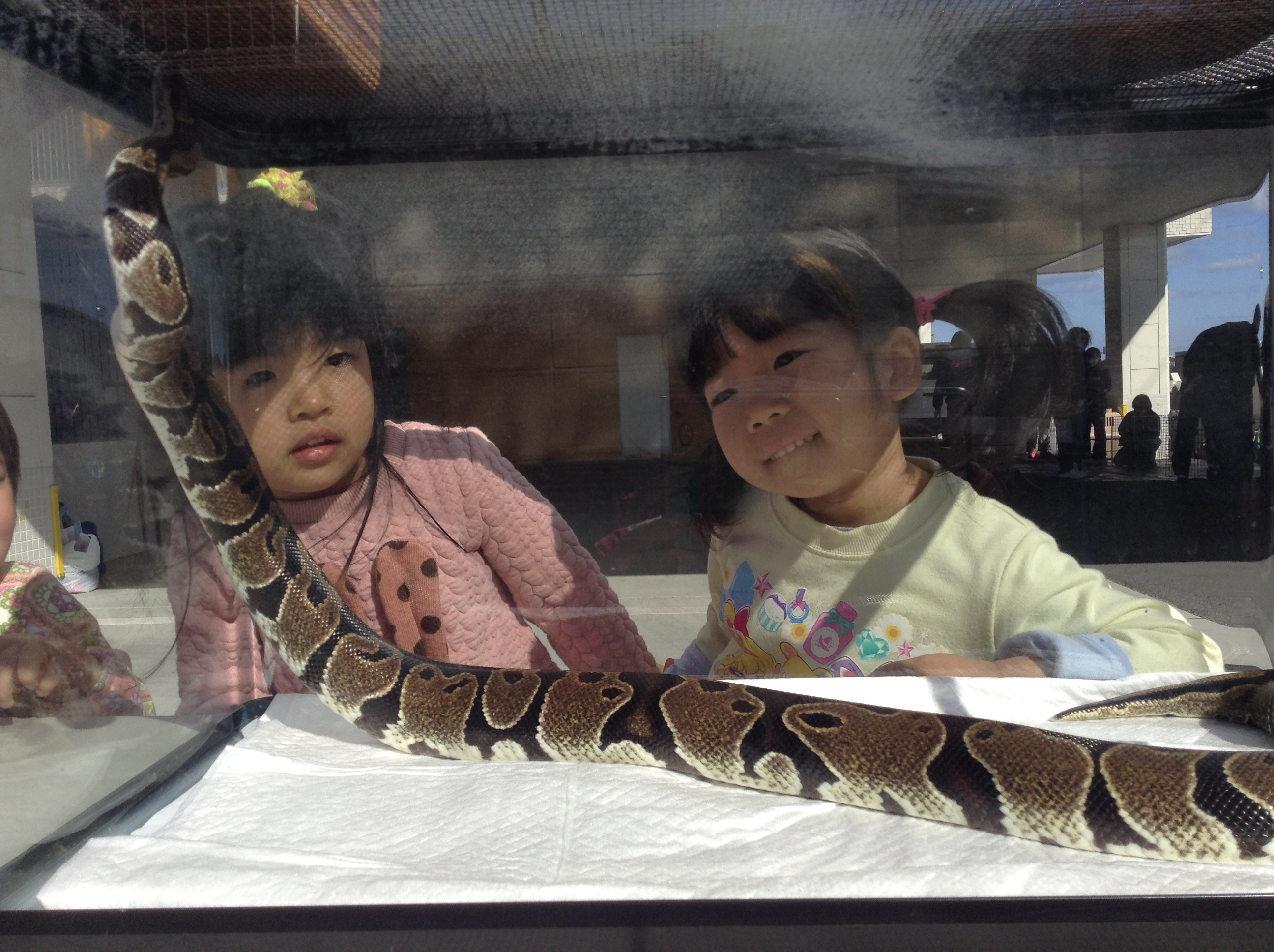 保育園が動物園!?